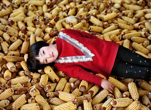 Portrait of a girl lying on corn pile
