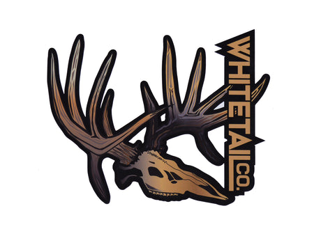 "9"" Whitetail Company Drop Tine Skull Decal"