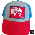 Colorado Buffalo Baseball hat - RMOHATS
