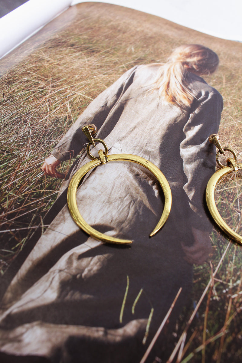 Horse shoe hoop earrings