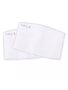 PM2.5 Face Mask Filters 2 Pairs