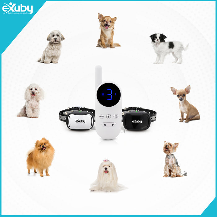 eXuby Tiny Dual Shock Collar - Smallest Collar on The Market - Sound, Vibration, Shock - 9 Intensity Levels - Pocket-Size Remote - Long Battery Life – Water-Resistant