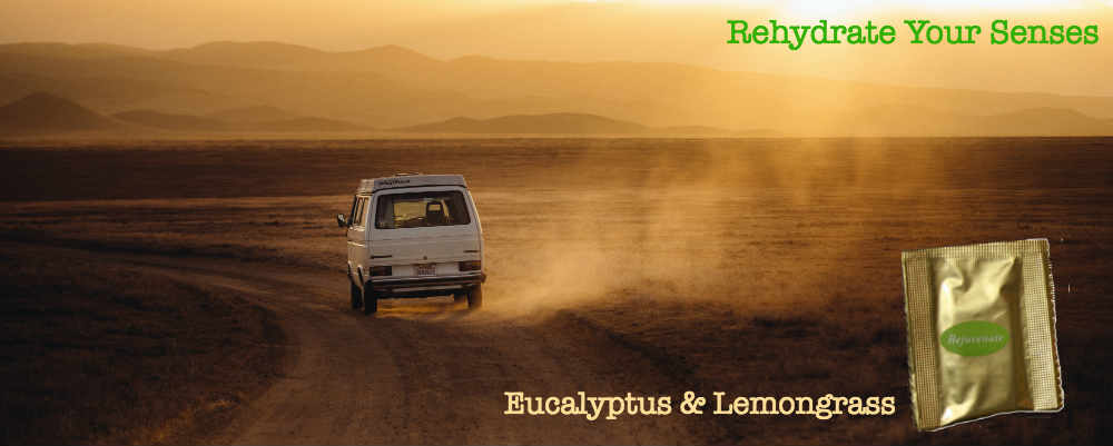 myChoice Aromatherapy - lemongrass eucalyptus essential oils aromatherapy natural car air fresheners