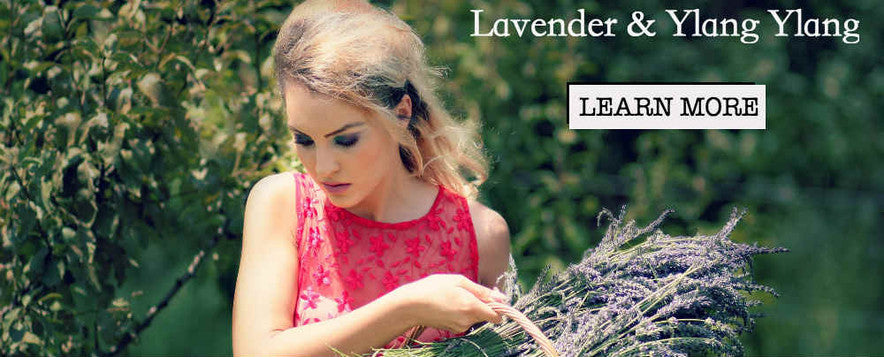 lavender essential oil car air freshener