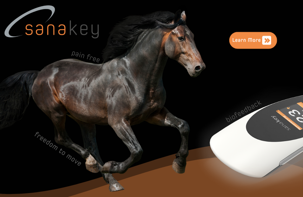 Learn more about Sanakey