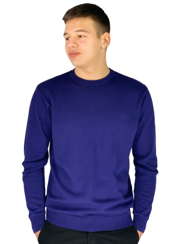 Pierre Cardin Mens New Season Essential Crew Neck Knitted Jumper - Cobalt