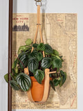 MEDIUM TAN PLANT HANGER