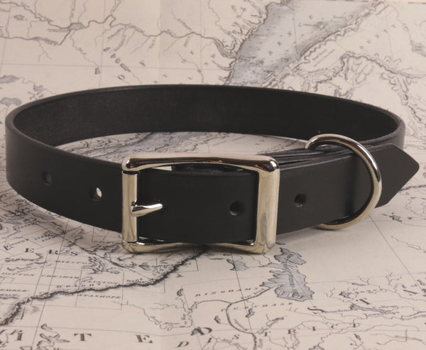 THE DOG COLLAR  X-LARGE