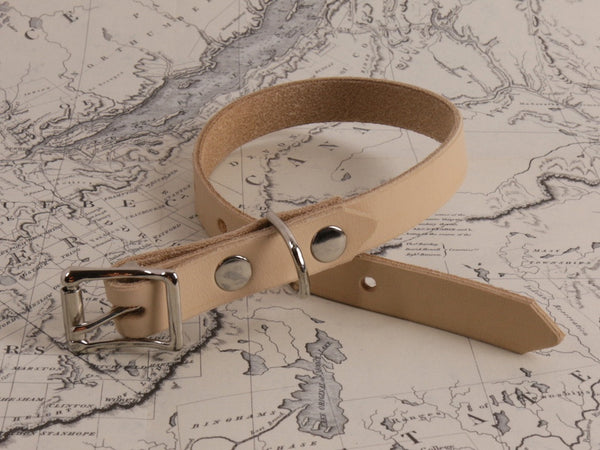DOG COLLAR - THIN
