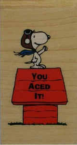 """You Aced It!"" RUBBER STAMP (Used / MINT CONDITION)"