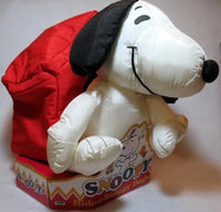Snoopy and Doghouse