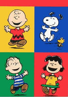 CHARLIE BROWN AND FRIENDS Flag