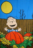 LINUS IN PUMPKIN PATCH Flag