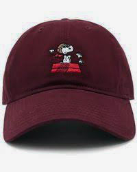 Flying Ace Embroidered Ball Cap