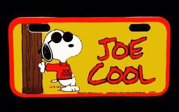 JOE COOL License Plate
