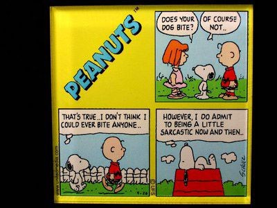Peanuts Comics Panel Acrylic Magnet - Charlie Brown and The Little Red Haired Girl