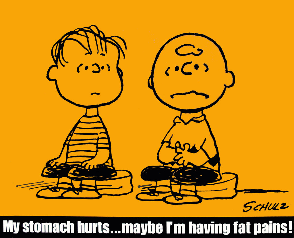 Peanuts Laminated Vintage Poster - Fat Pains