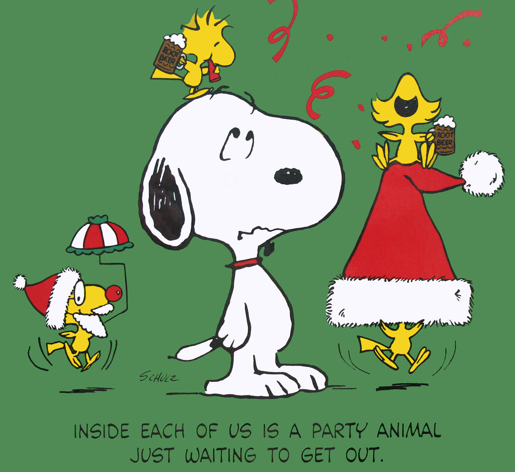 Peanuts Laminated Vintage Poster - Friends Party
