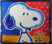 Computer Mouse Pad - Snoopy and Woodstock