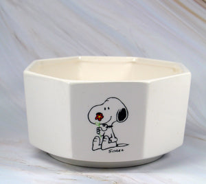 Snoopy and Woodstock Vintage Octagon Planter
