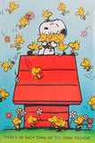 Snoopy and Friends Jigsaw Puzzle
