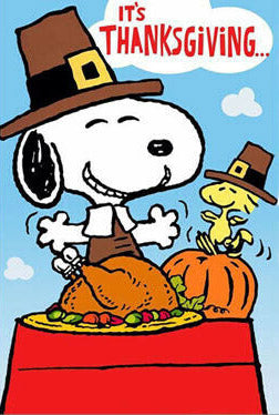 Peanuts Double-Sided Flag - It's Thanksgiving