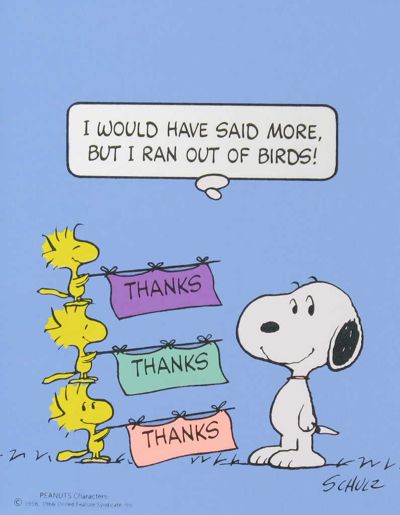 Snoopy and Woodstock Blank Thank You Cards