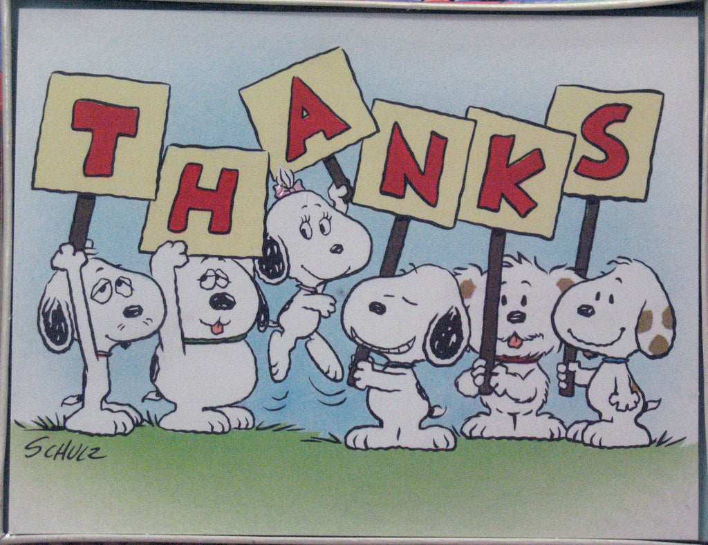 Daisy Hill Puppies Vintage Thank You Cards