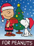 Peanuts Vinyl Wall Decor / Hallmark Store Display - Charlie Brown and Snoopy