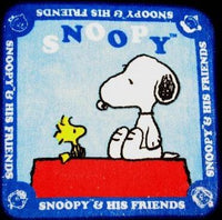 Wash Cloth - Snoopy's Doghouse