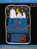 Snoopy Indoor/Outdoor Halloween Lighted Yard Art (Used)