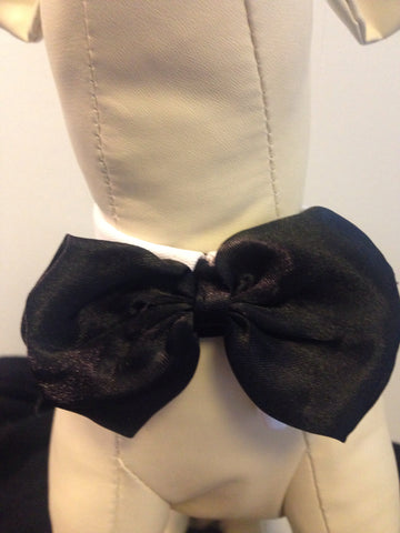 Black Bow tie On White