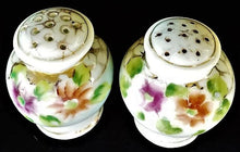 Load image into Gallery viewer, Vintage Porcelain Salt and Pepper Shakers with Handpainted Flowers
