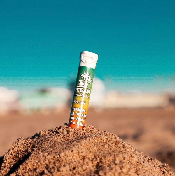 Plastic News: Cleaning the ocean, one cannabis product at a time