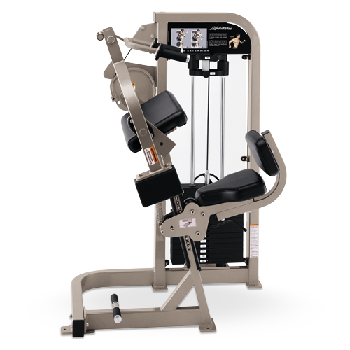 Life Fitness Pro 2 Triceps Extension