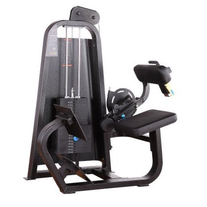 Precor Icarian Back Extension