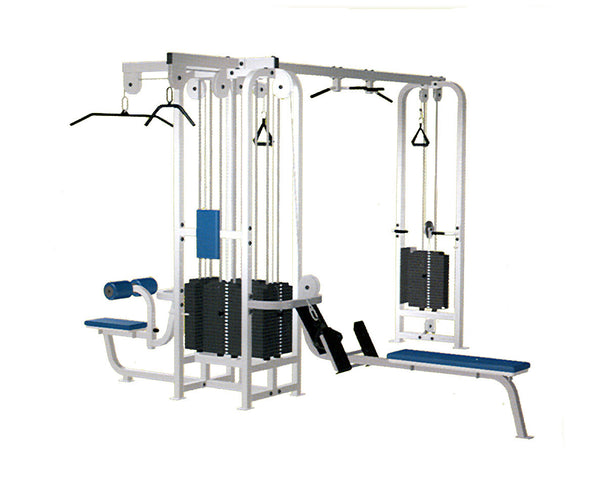 Life Fitness 5-Stack Jungle Gym