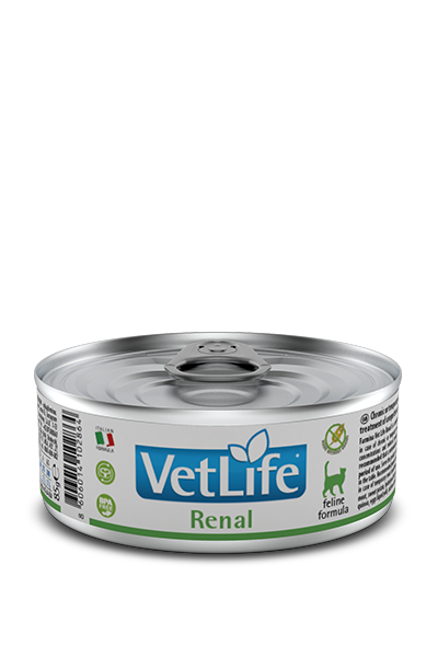 RENAL WET FOOD FELINE - Pet Chum