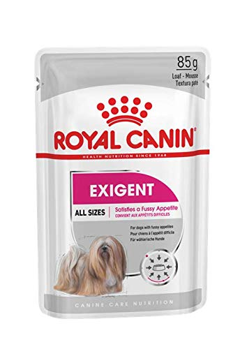 Royal Canin Exigent Loaf Pouch (Pack of 12) - Pet Chum