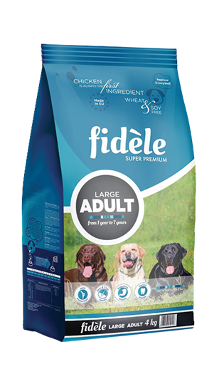 Fidele Adult Large