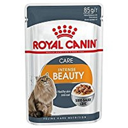 Royal Canin Intense Beauty Cat Food, 85 g (12 Pack) - Pet Chum