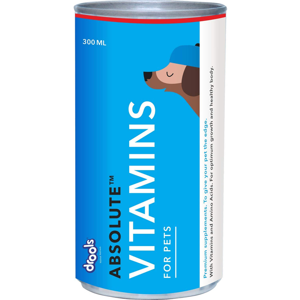Drools Absolute Vitamin Syrup- Dog Supplement - Pet Chum