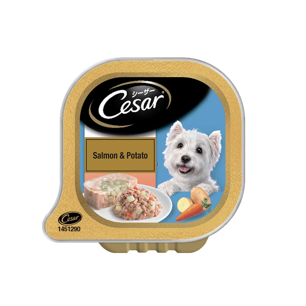 Cesar Premium Adult Wet Dog Food, Salmon & Potato, 6 Trays (6x100g) - Pet Chum