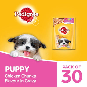 Pedigree Puppy Wet Dog Food, Chicken Chunks in Gravy, 30 Pouches (30 x 70g)
