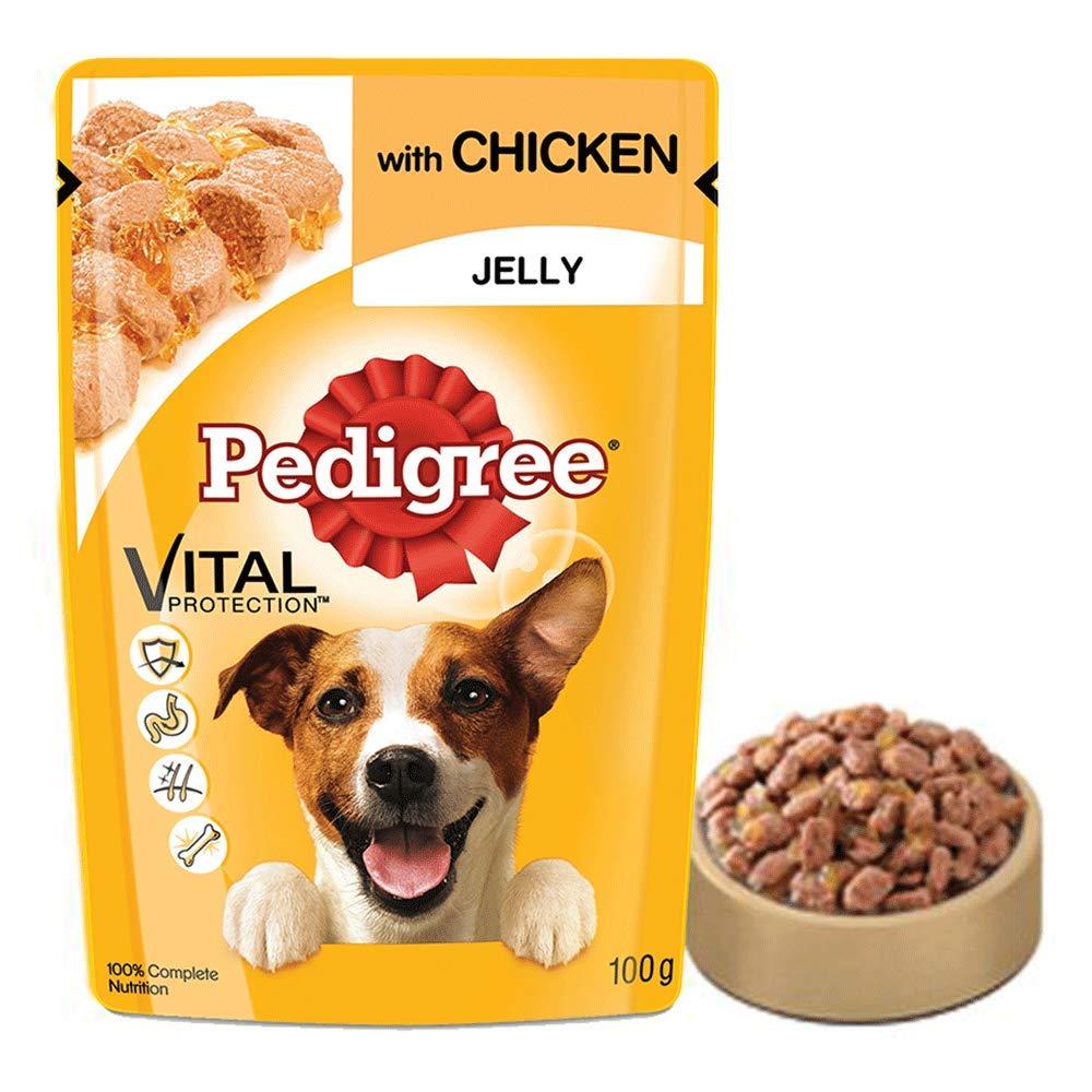 Pedigree Adult Wet Dog Food, Chicken in Jelly, 30 Pouches (30 x 100g)