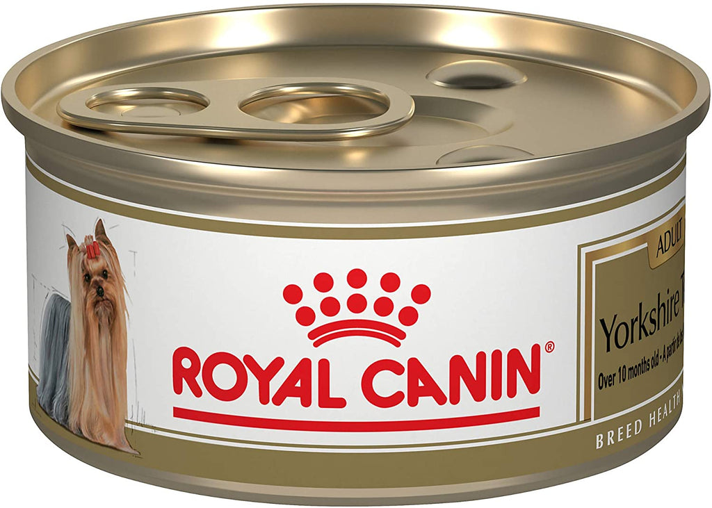 Royal Canin Breed Health Nutrition Yorkshire Terrier Wet Dog Food - Pet Chum