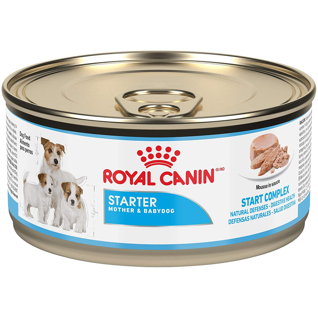 Royal Canin Starter Mousse for Mother and Baby Dog Canned Dog Food - Pet Chum