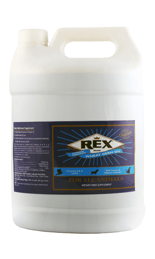 Rex Wheat Germ Oil 5 L