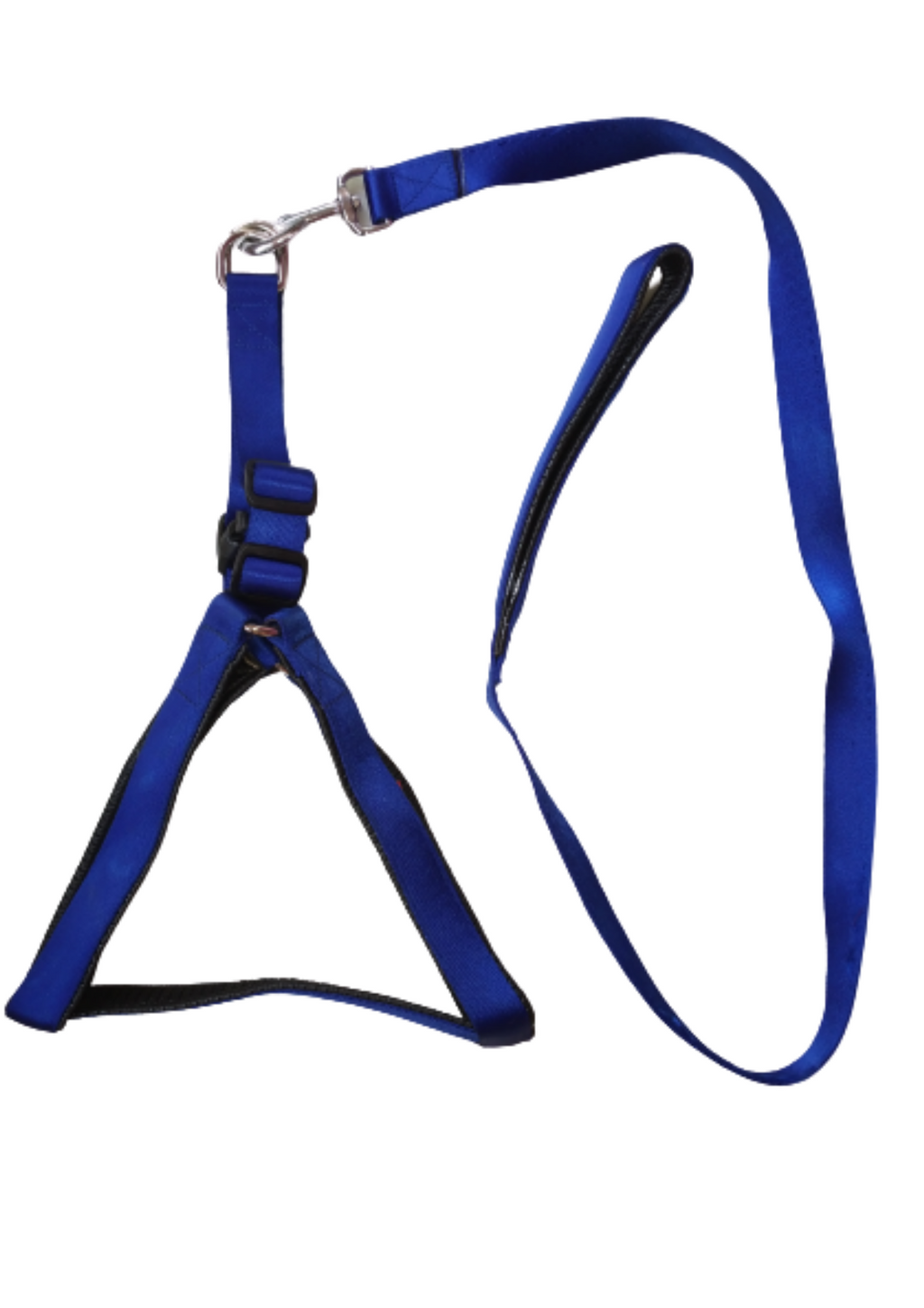 Nylon with Blue Padding Dog Harness Leash Set | Blue