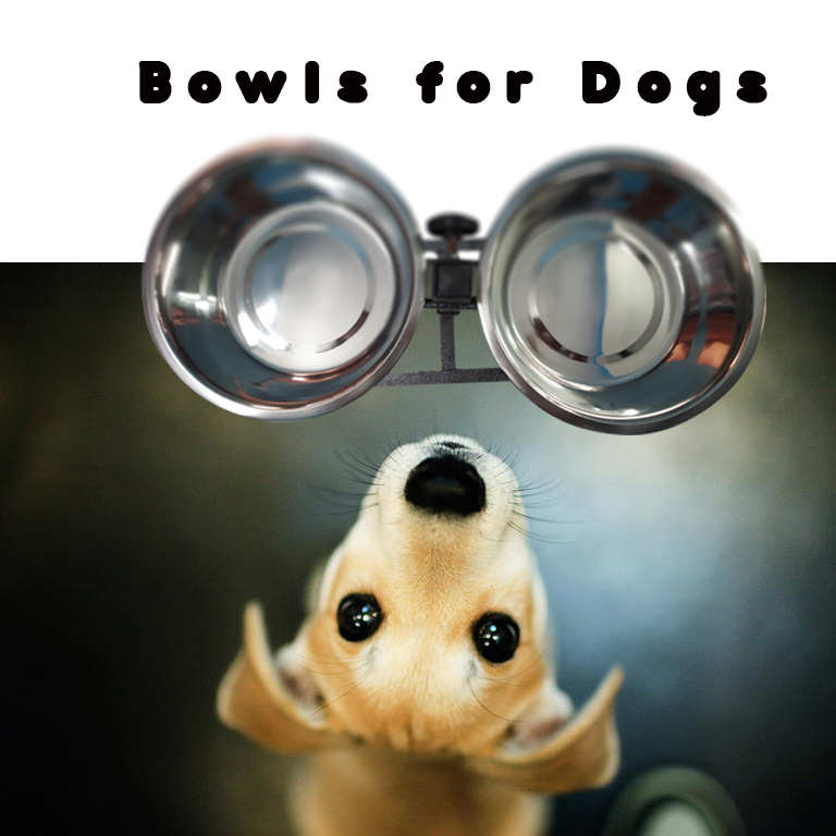 Modern Double Diner Elevated Wide Rimmed Pet Bowls - Pet Chum